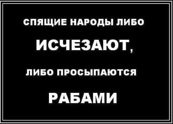 +380997393753
